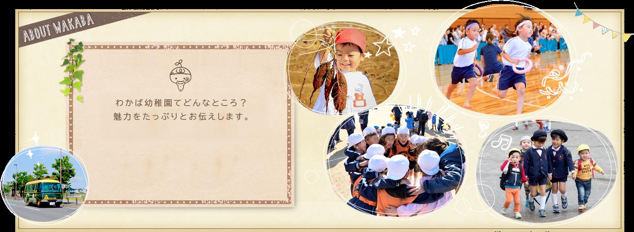 menu WAKABA わかば幼稚園ってどんなところ?魅力をたっぷりとお伝えします。